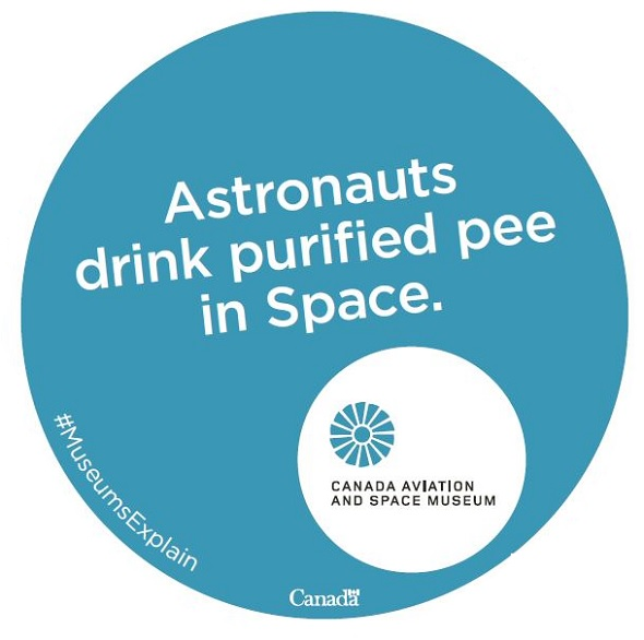 Astronauts drink purified pee in Space.